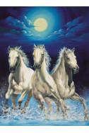 Pferde im Mondschein - 1000