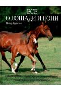 Все о лошади и пони