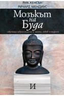 Мозъкът на Буда