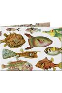 Портмоне Slim Wallet 19 Fishes