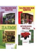 Комплект: Балконски цветя 1, 2 + Палми + Коледна звезда