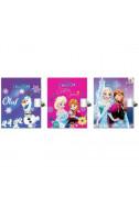 Дневник с катинар Disney - Frozen