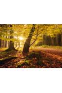 Пъзел Autumn Magic - 1000