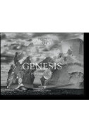 GENESIS. Postcard Set