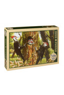 Pileated Woodpeckers - 1000