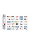 Мини карти-речник Animals