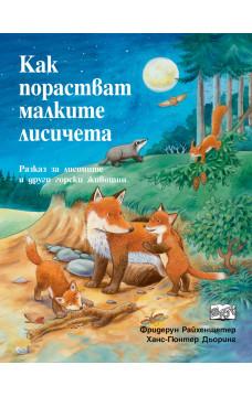 Как порастват малките лисичета. Разказ за лисиците и други горски животни