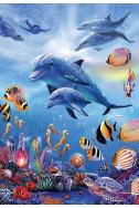 Царството на делфините