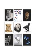 Тетрадка Animals A5, 60 л. - широки редове