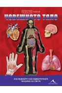 Отвътре навън: Човешкото тяло