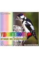 Удивителните птици на България