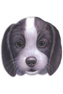 Кученцето Бари