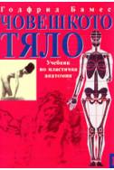 Човешкото тяло - Учебник по пластична анатомия